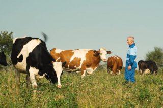 Un gandeiro galego, protagonista da campaña de Lactalis polos seus 20 anos de leite ecolóxico