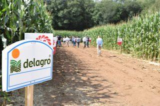 Delagro organiza este xoves en Cantabria unha xornada técnica sobre forraxes na cornixa cantábrica