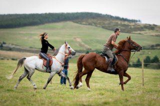 Fin de semana para disfrutar del mundo del caballo en Muras