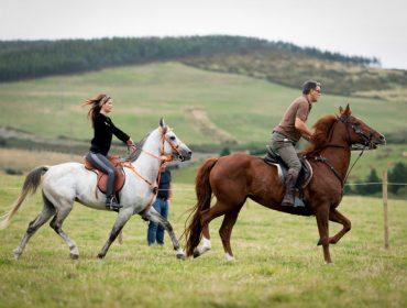 Fin de semana para disfrutar do mundo do cabalo en Muras