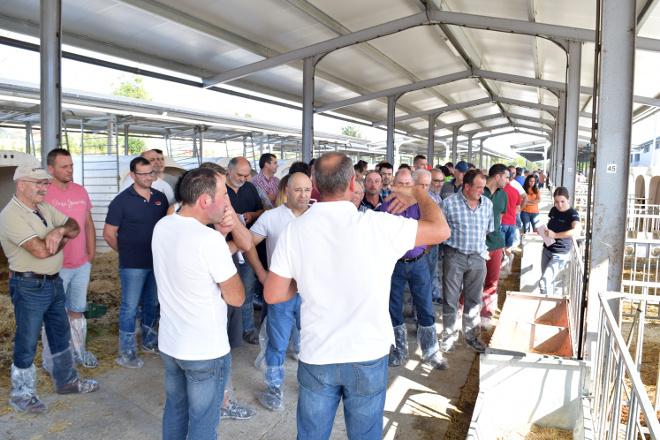 O centro de recría da Deputación de Lugo xa alberga 1.100 xatas de 50 ganderías