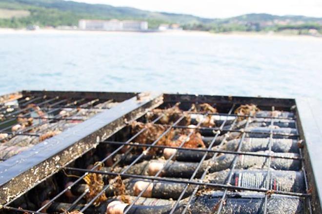 Gardado baixo o mar, fermentado en granito ou en barro: Novas tendencias na elaboración do viño