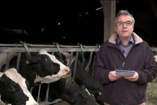 """""""O principal reto para o sector lácteo é a falta de relevo xeracional nas gandarías"""""""