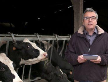 """""""El principal reto para el sector lácteo es la falta de relevo generacional en las ganaderías"""""""