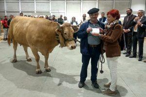 A gandería da Morena, de Friol, fíxose co premio á mellor vaca parida