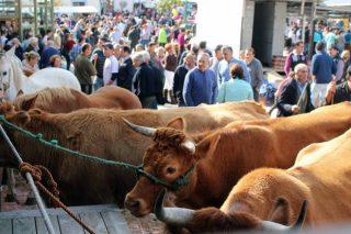 Abadín mantense fiel á tradición o sábado 2 de novembro coa Feira de Santos de Gontán