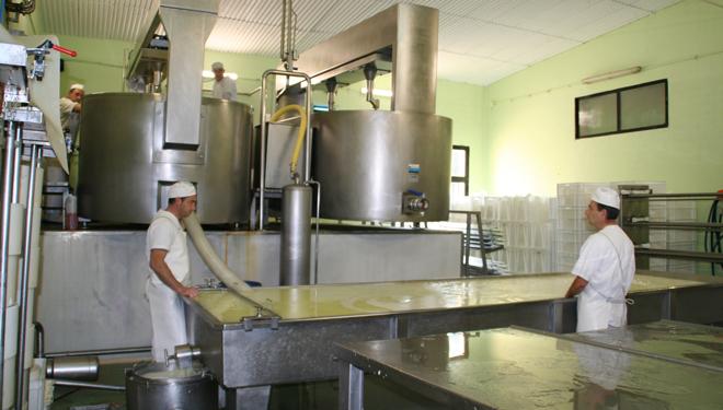 Lacteos-Farelo-Proceso-de-elaboracion-de los-quesos-