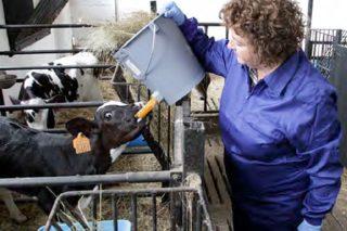 Fademur-Galicia pon o foco sobre a dobre discriminación das mulleres rurais