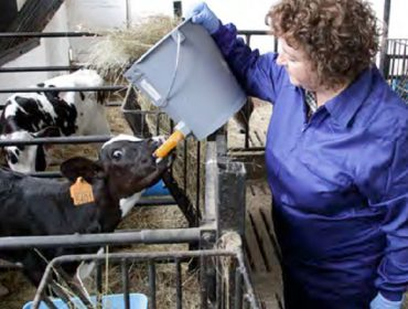 Boas prácticas laborais para as mulleres traballadoras do agro