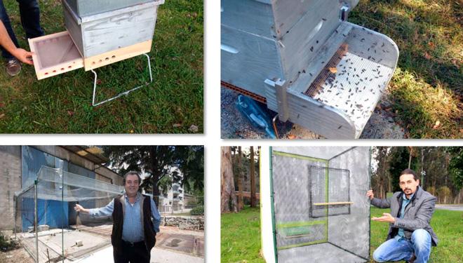 Distintos métodos de protección para envolver a colmea e tentar protexela do avespón asiático.