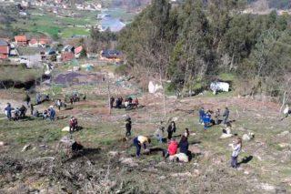 Buscan apoios para desenvolver 13 microproxectos no monte comunal do Viso