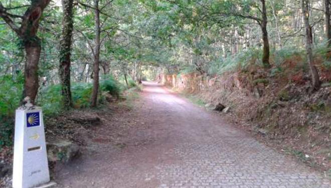 Proxecto-restauracion-Camino-Santiago-CMVMC-Do-Viso-