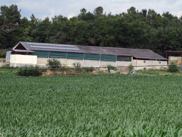 O Goberno destina 30 millóns de euros a mellorar a eficiencia enerxética nas explotacións agropecuarias