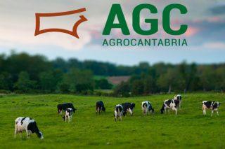 Agrocantabria organiza o día 24 a súa primeira Xornada Técnica de Vacún de Leite