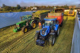As 12 claves para unha boa conservación dos silos de millo