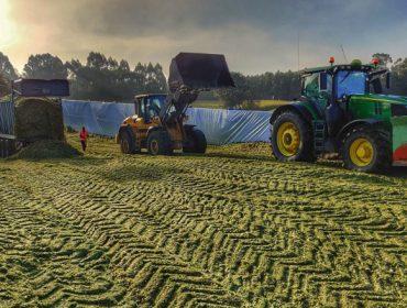 Vídeo e imaxes do ensilado do millo en Galicia 2019