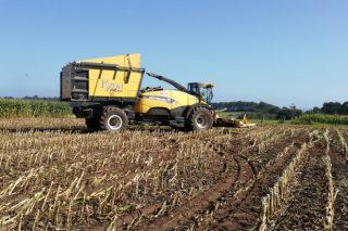 Poden as cooperativas mobilizar terra dispoñible para os seus socios?