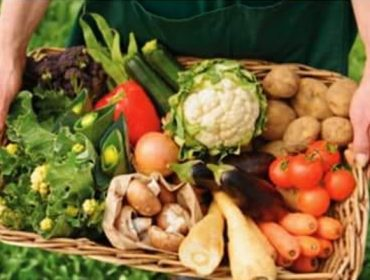 Curso de agricultura ecológica en Viveiro