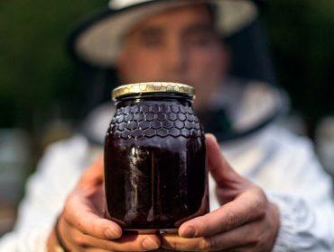 Critican que a nova norma de etiquetaxe do mel non cumpre as demandas dos apicultores