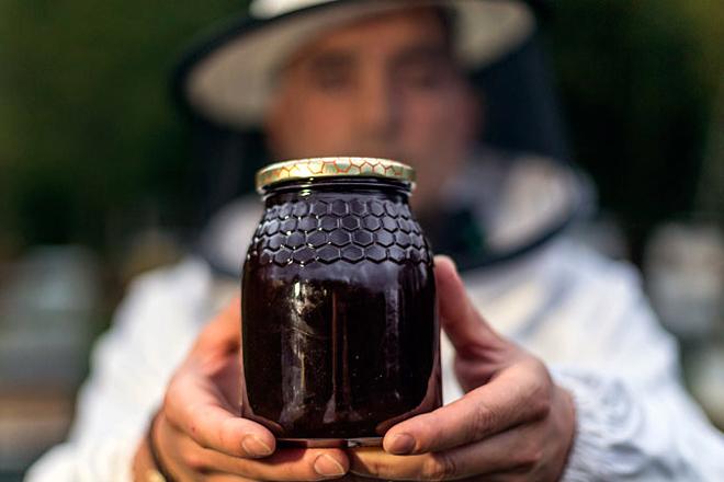 Moi boa colleita de mel de eucalipto na costa e máis frouxa en zonas do interior dependentes do carballo e o castiñeiro
