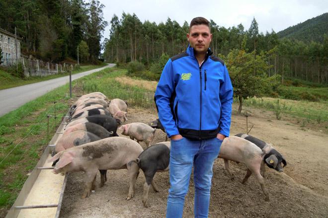 Adrián xunto aos seus porcos na explotación que ten no Valadouro