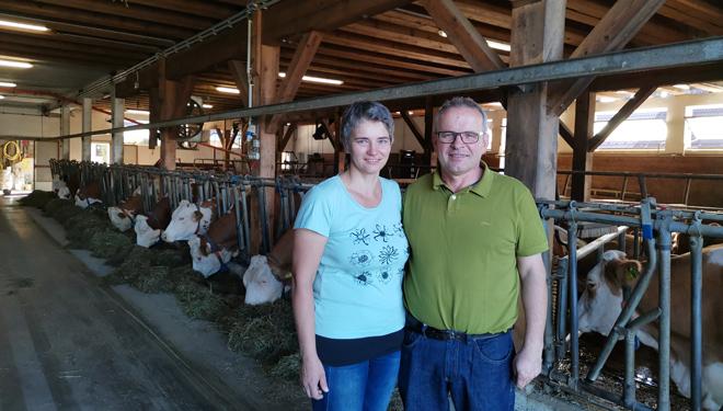 Gandaría Fischer, un rabaño na elite das granxas ecolóxicas de Austria