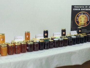 Os 5 mellores meles de Galicia premiados no I Concurso Mel 5 Estrelas