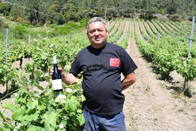 """""""En Valdeorras logramos un viño expectacular coa variedade Brancellao"""""""