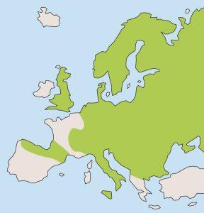Mapa da distribucion da praga da rata-toupa (en cor verde) en Europa