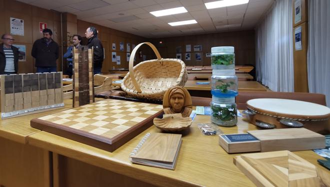mostra-de-traballos-elaborados-con-madeira-de-cerdeira-CIF-Lourizan-