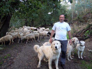 Explotacións Gandeiras Soli, un exemplo de diversificación