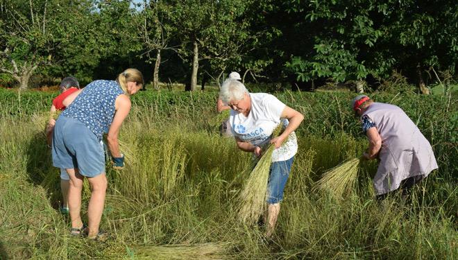 Día Mundial da Muller Rural: Só o 30% son titulares de granxas