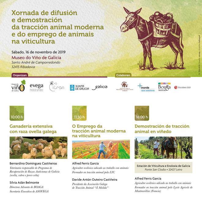 xornada-programa-traccion-animal-na-viticultura-