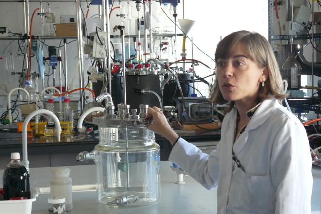 """""""La produción de biogás a partir de purines debería ser para autoconsumo de la granja"""""""