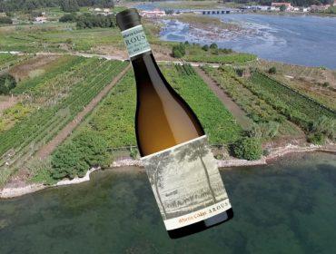 """Martín Códax presenta o seu albariño """"Arousa"""", de pequenos viñedos ao lado do mar"""