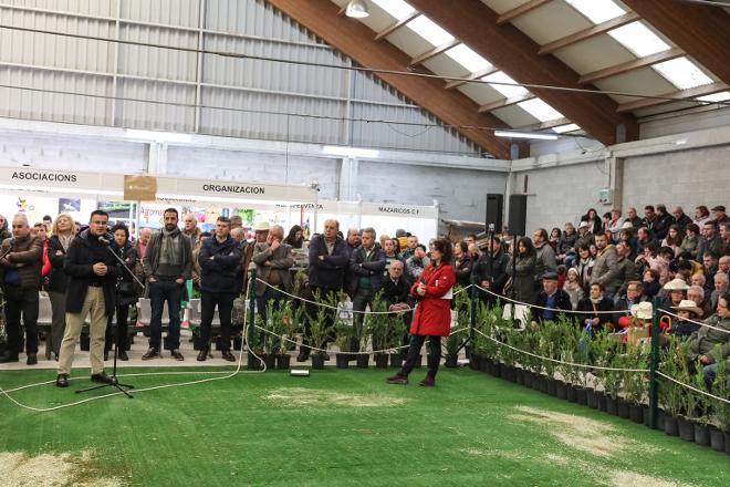 Resultados de la subasta de ganado frisón de Mazaricos