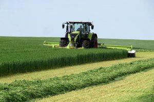 O raigrás pode agardarse a que teña un 28% de materia seca porque non afecta á dixestibilidade da fibra