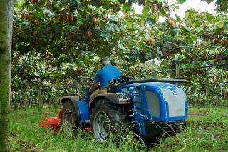 BCS Group diseña un tractor idóneo para cultivos en emparrados, como kiwi o viña