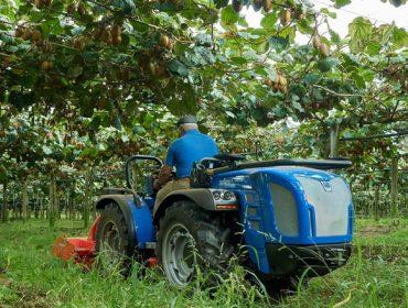 BCS Group deseña un tractor idóneo para cultivos en emparrados, como kiwi ou viña