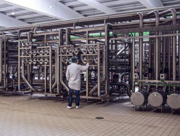 Inleit construirá unha planta piloto para mellorar a obtención de proteínas lácteas