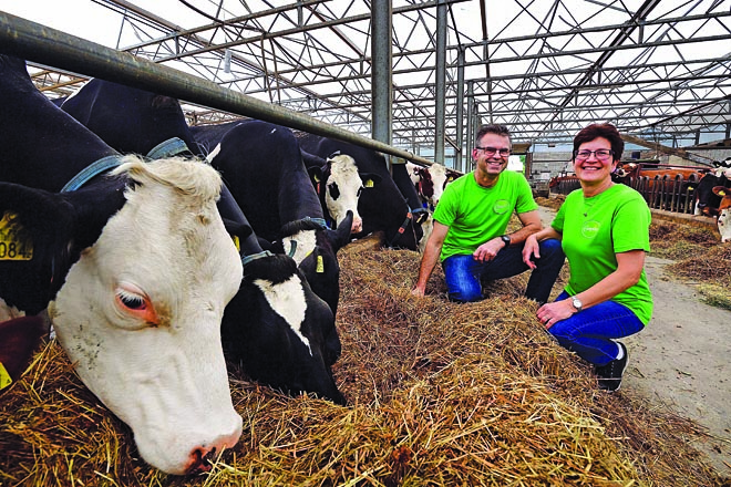 Heide Hoeve, helados holandeses a partir de la producción de 56 vacas ProCROSS