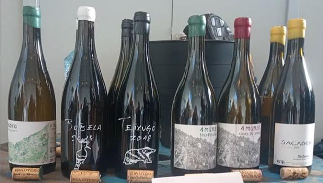 Algunos de los vinos que elabora Iria Otero.