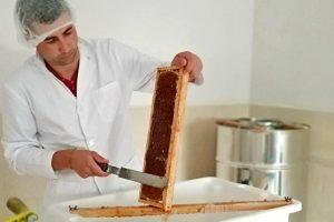 Zona de estracción de mel que teñen habilitada en Carballido