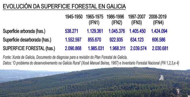 grafico evolución Superficie Forestal en Galicia