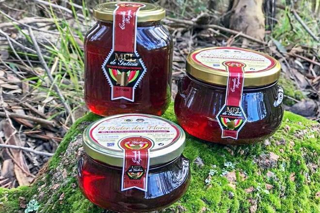 Piden á Xunta que compre mel galego para hospitais, residencias e comedores sociais