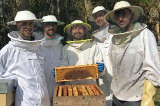 Ouro Puro, ideas imaxinativas para explotar o mel de eucalipto da Mariña