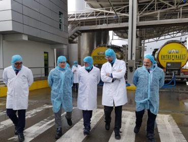 Entrepinares prevé duplicar a súa produción de queixo na planta de Vilalba