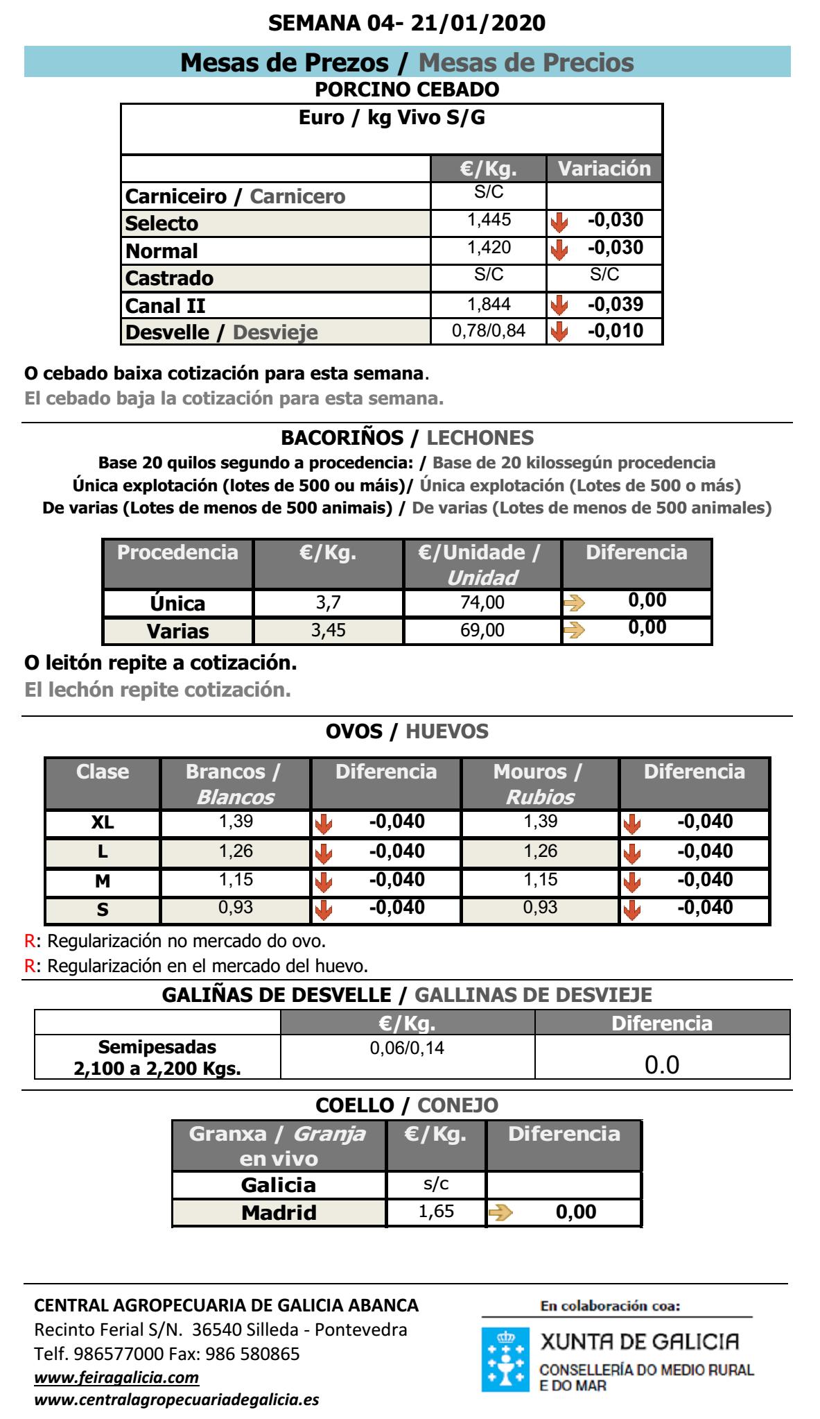 silleda 2020 XANEIRO porcino