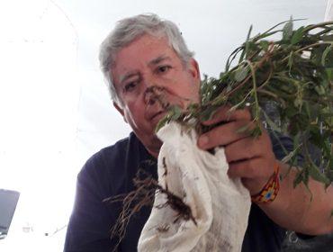«Los abonos orgánicos son mucho más beneficiosos para el suelo que los químicos»