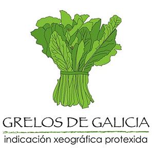 Logo IXP Grelos de Galicia blanco